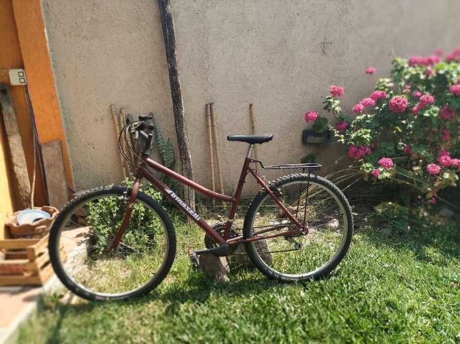 Bicicleta Tomaselli en Muy Buen Estado