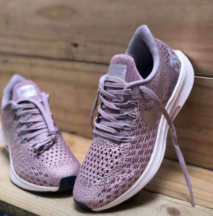Zapatos Bbb