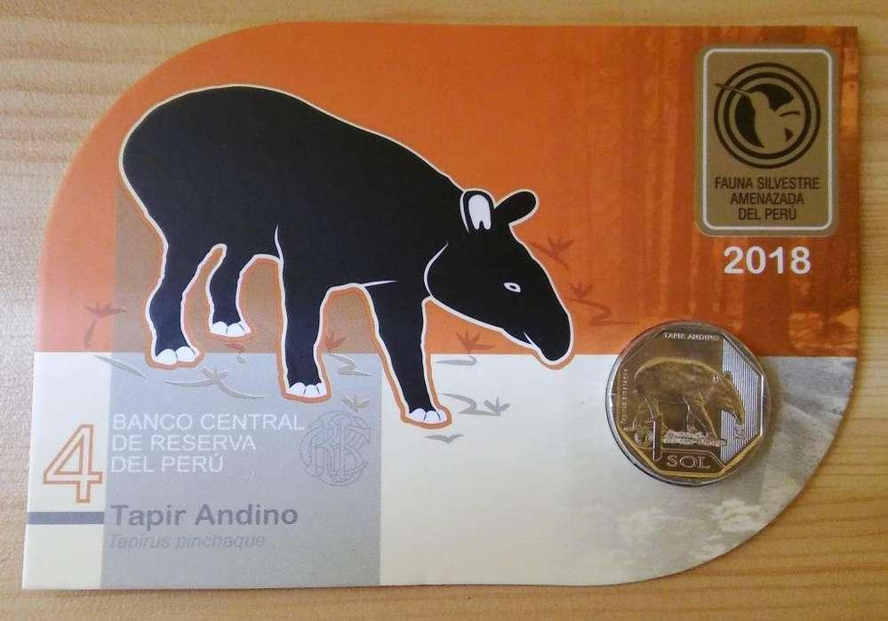 Blister Tapir Andino