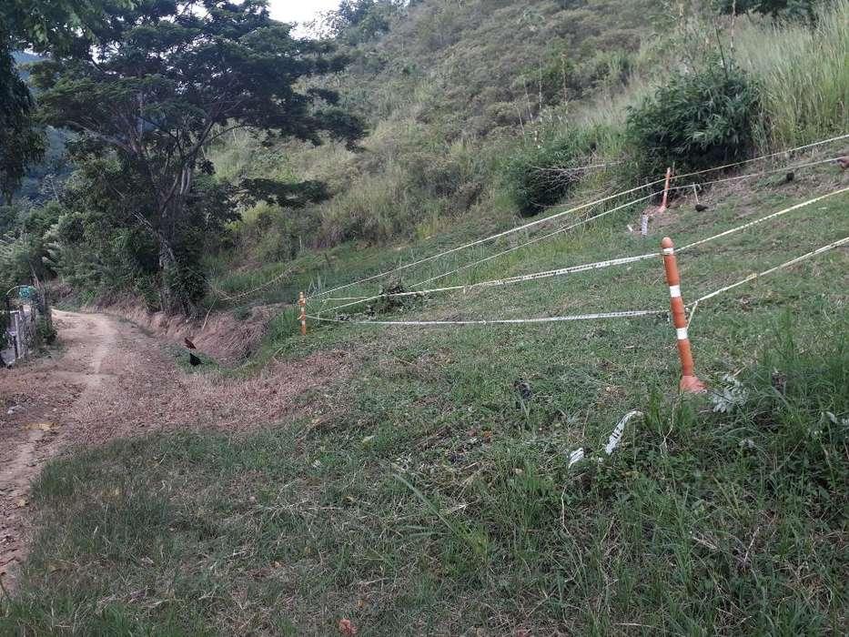 Vendo O Permuto Tel 3184489494 en Bocas