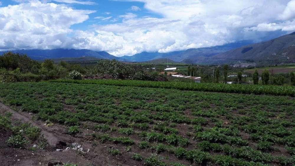 Venta de 15 hectáreas de Terreno, Ideal para Proyecto de viviendas Campestres en Ibarra
