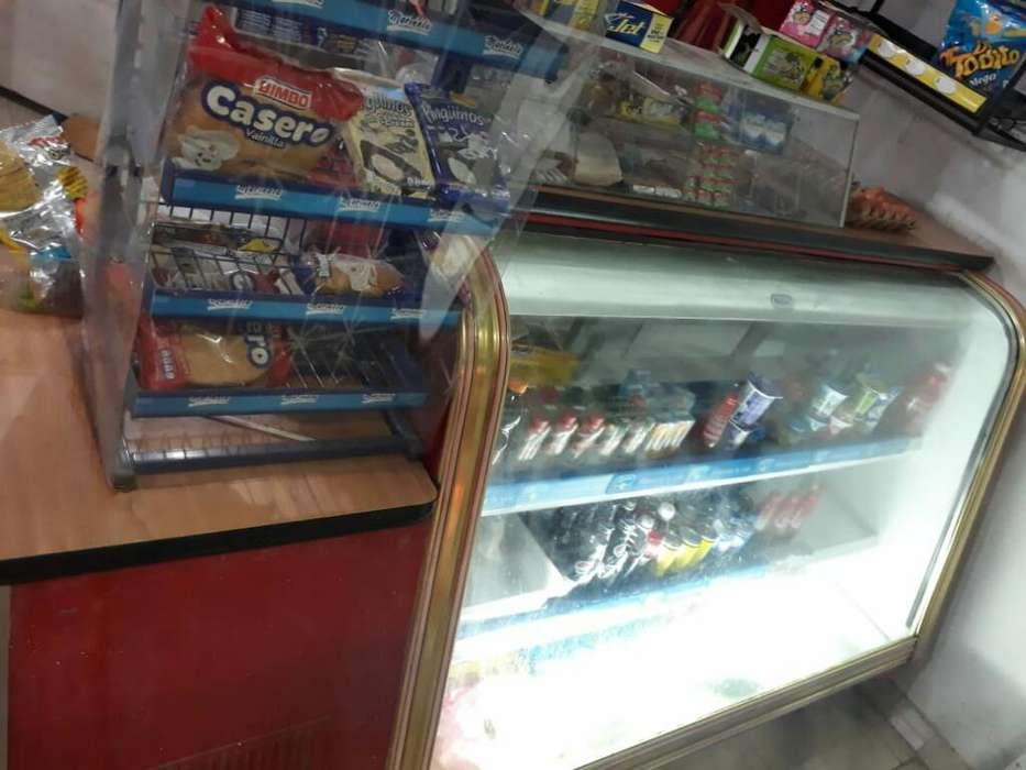 Congelador para Negocio