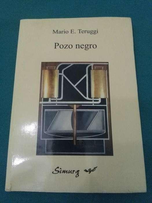 Pozo Negro . Mario Teruggi . Libro Novela