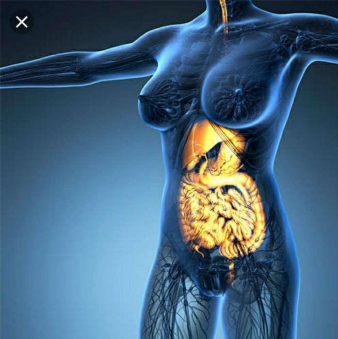 Gastroenterología Consultora Y Mucho Mas