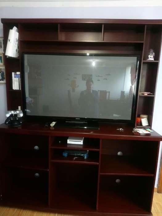 Mueble Y Televisor