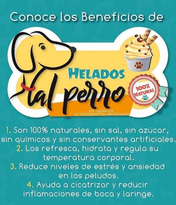 Helados Pal <strong>perro</strong>