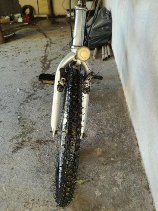 Vendo Bicicleta Tomaselli Rodado 20