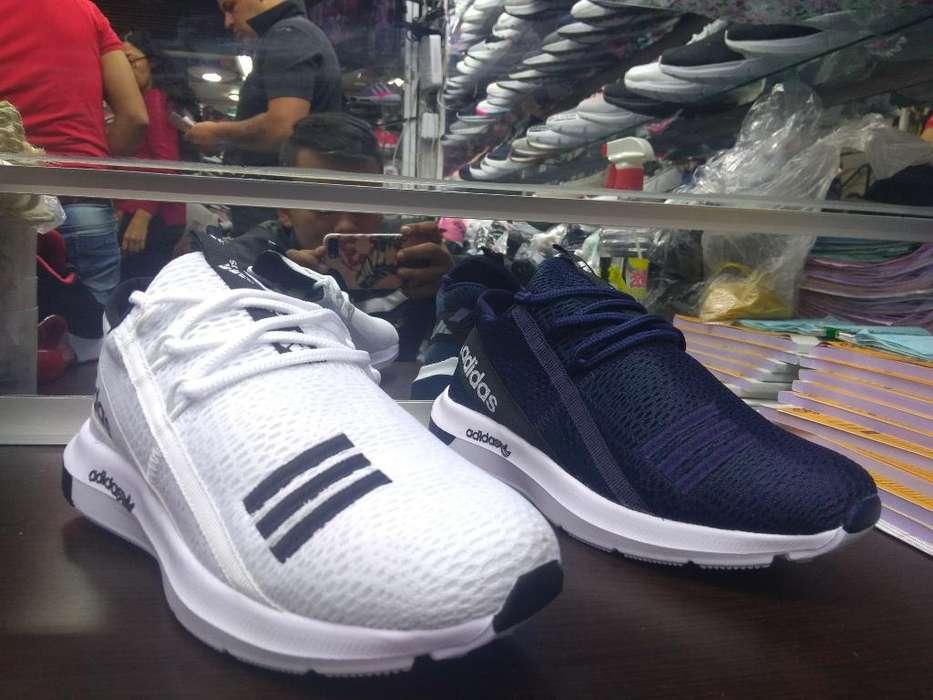 Adidas Quiroto