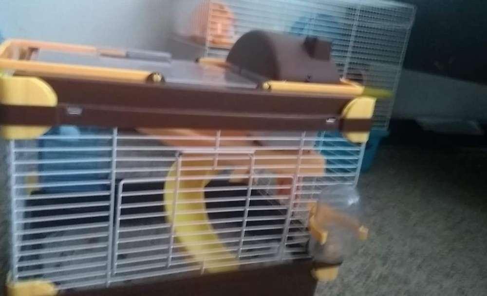 Jaula para Hamster Pequeña