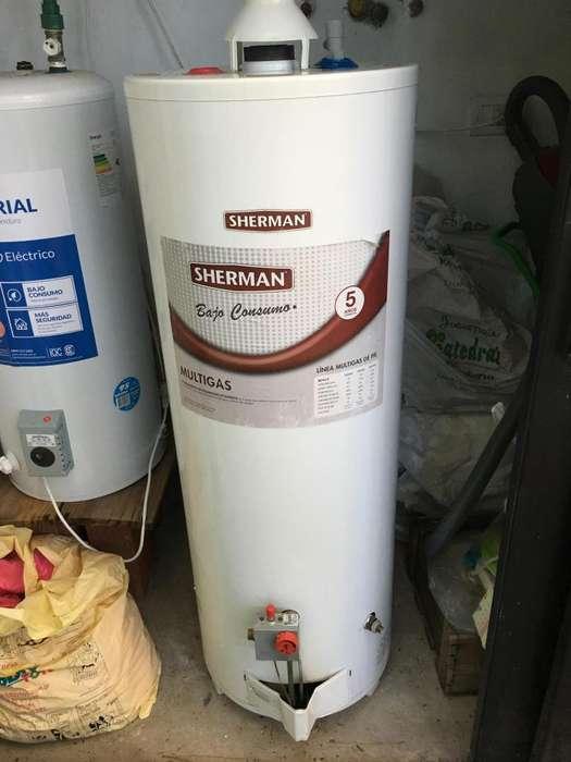 Termotanque Sherman 120 Litros Multigas De Pie Bajo Conusmo