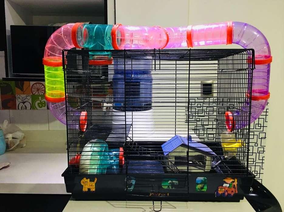 Casa para Hamster con Tubos