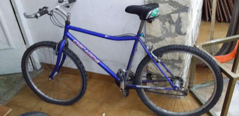 Bici Todo Terreno Rod 26 Chicago Usa