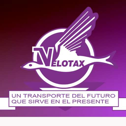 Servicio de transporte 3152703179