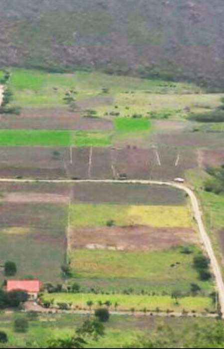 Vendo Terreno Ideal para Quinta