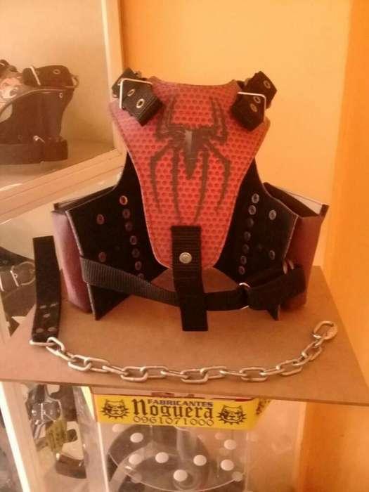 <strong>accesorio</strong>s Collares Pecheras Cadenas