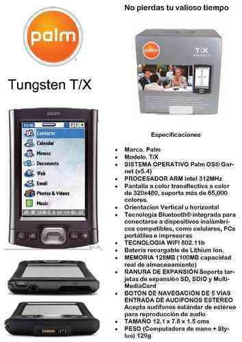 palm tungsten tx