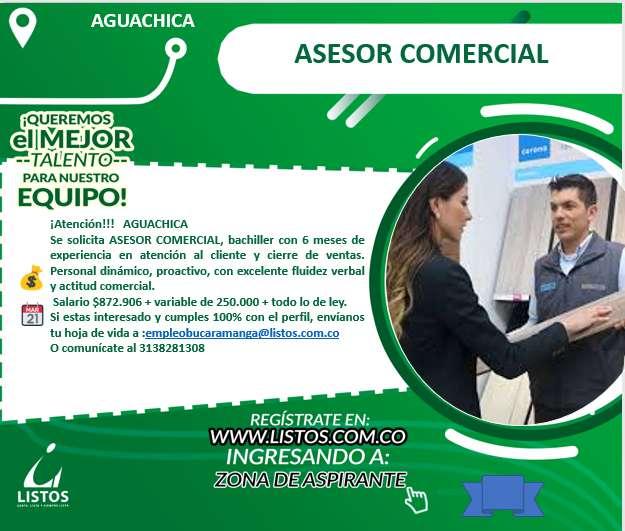ASESOR COMERCIAL EN EL SECTOR DE FERRETERIA