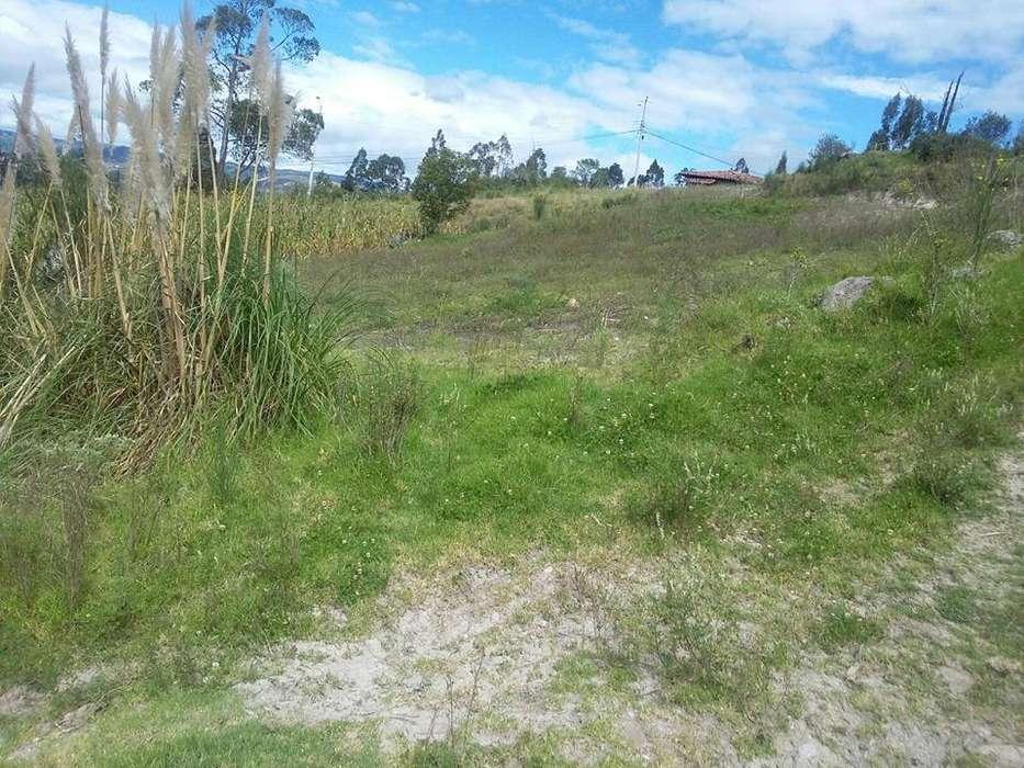 <strong>terreno</strong> en Ricaurte sector el Arenal desde 517 mts