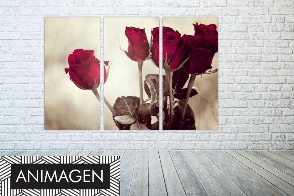 Tríptico de rosas 2211