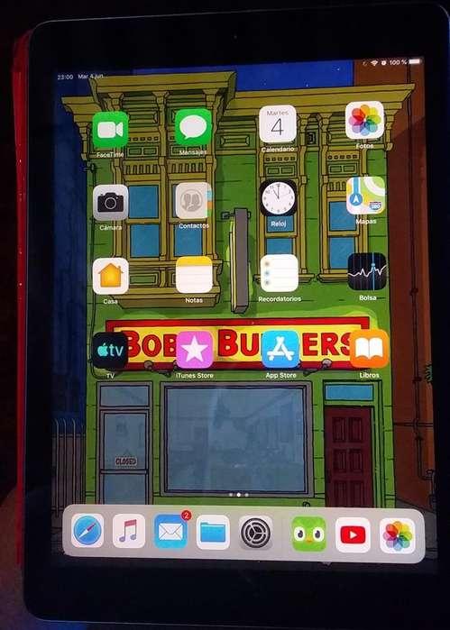 iPad Air 1G