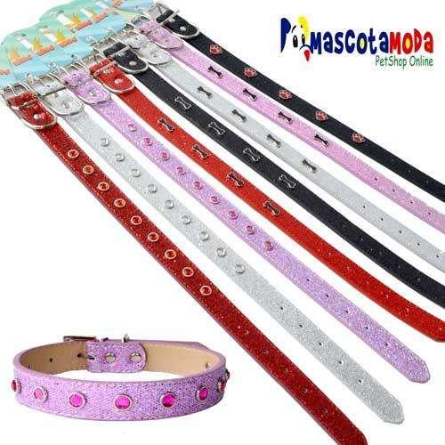 Collares brillantes y coloridos para perros y cachorros de todos los tamaños