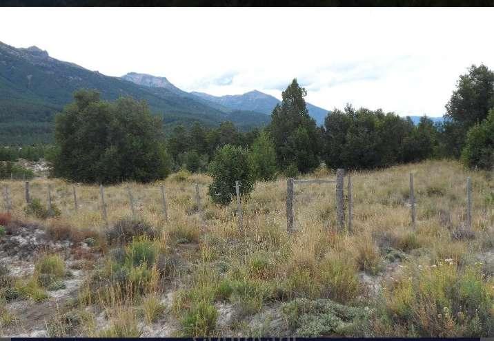 Remato Terrenos en Villa Lago Meliquina