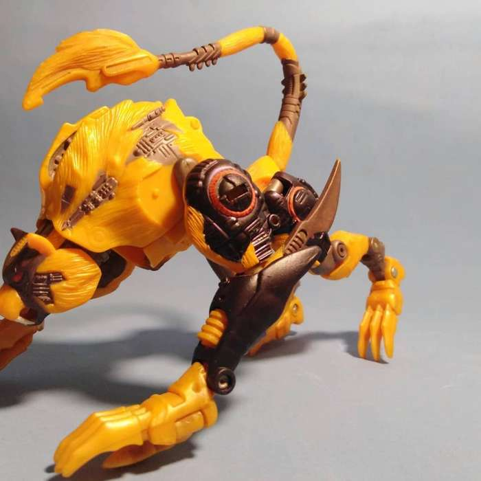 Cheetor Beast Wars Transformes