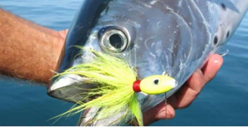 Señuelo de Pesca (jigs)