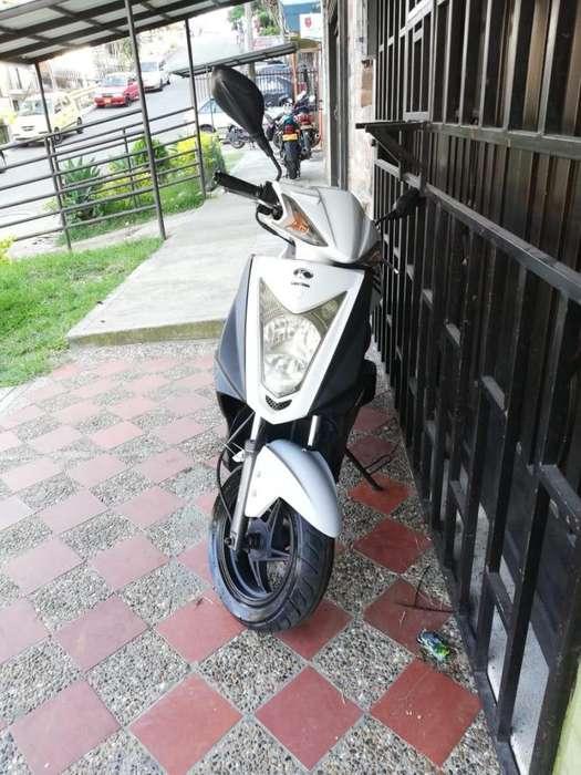 Moto Agility Fly