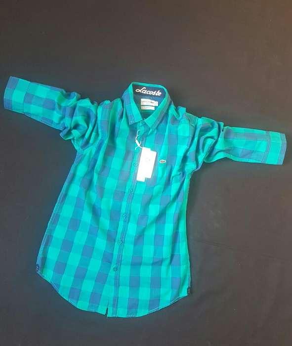 Camisa Lacoste Italy Original Lo Mejor