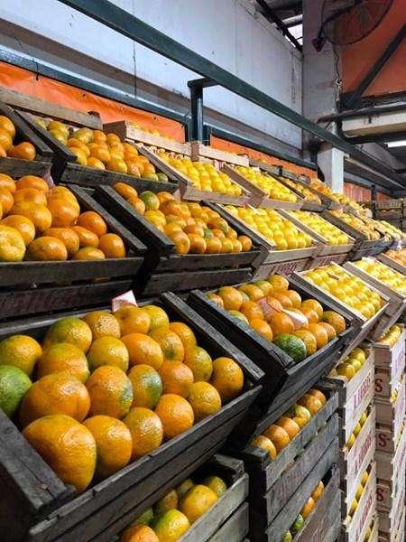 Reparto de frutas y verduras sin cargo!!!