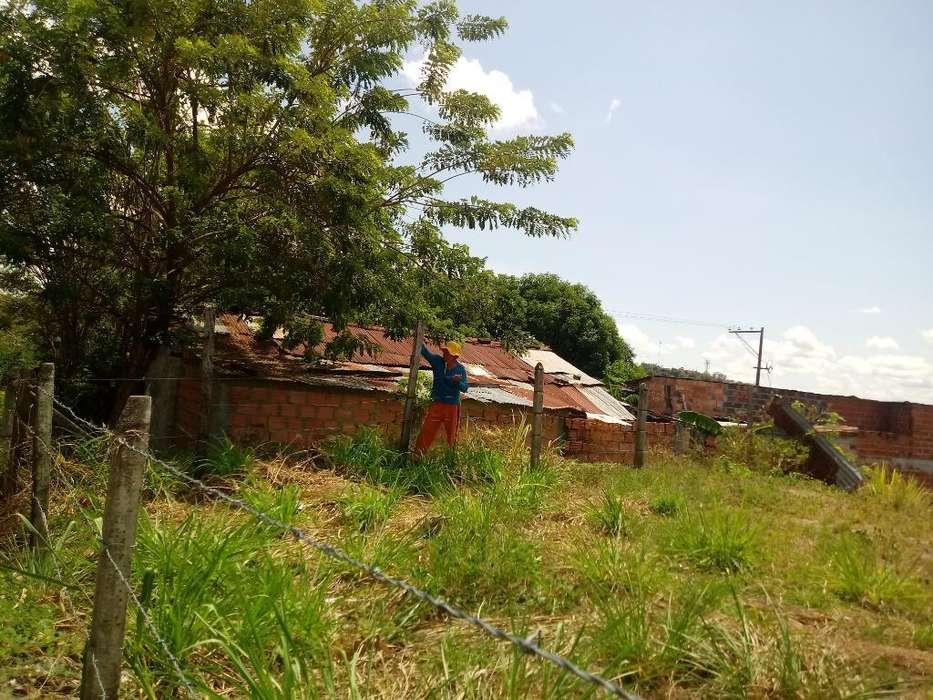Vendo Casa Lote Grande Bien Economico