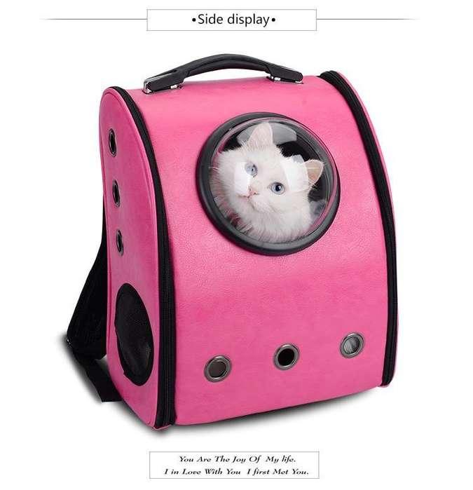 maleta para mascota