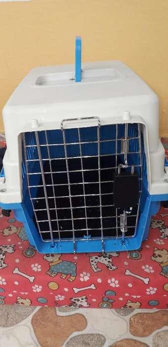 Guacal Perros Y Gatos