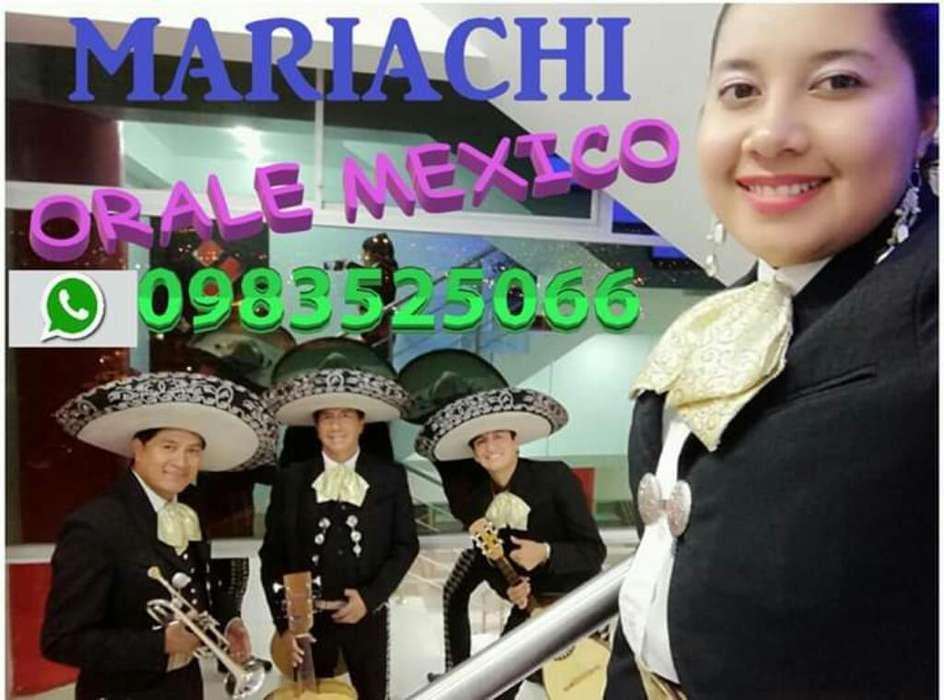 Mariachi Órale México Serenata Mexicana