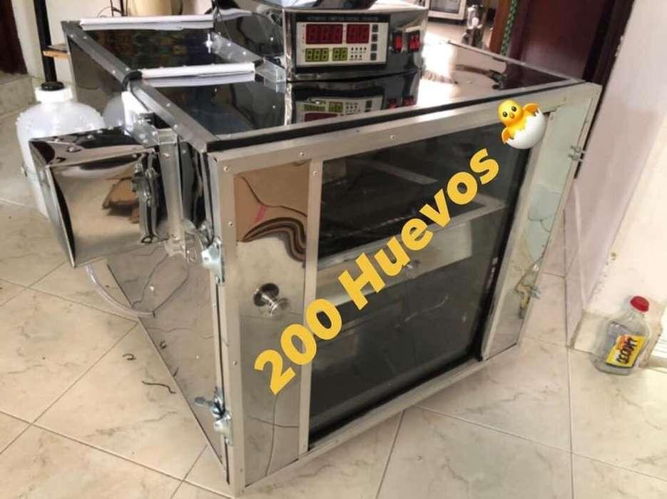 Incubadoras Automaticas para Huevos de C
