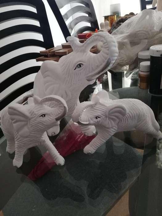 Elefantes (3)