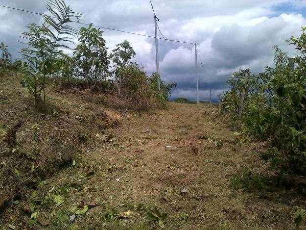 2 Lotes en la urbanización Villa Linda