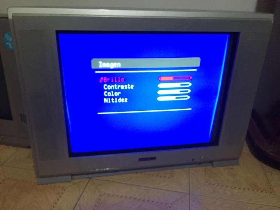 Vendo Televisor Top House de 29 Pulgad