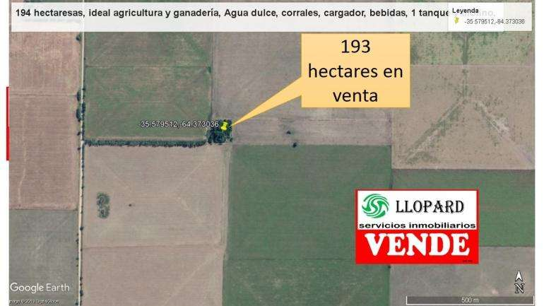 SE VENDE EXCELENTE <strong>campo</strong> EN ARATA, LA PAMPA IDEAL PARA ACTIVIDAD AGRÃCOLA GANADERA. MUY EN PRECIO!!