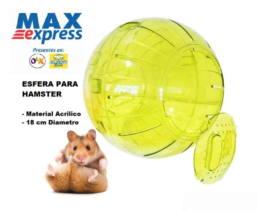 Esfera Bola para tu mascota Grande Para Hamster Y Roedores Acrilico