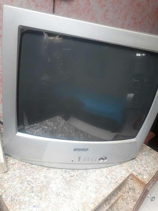 Tv de 21 Y Cama Sencilla