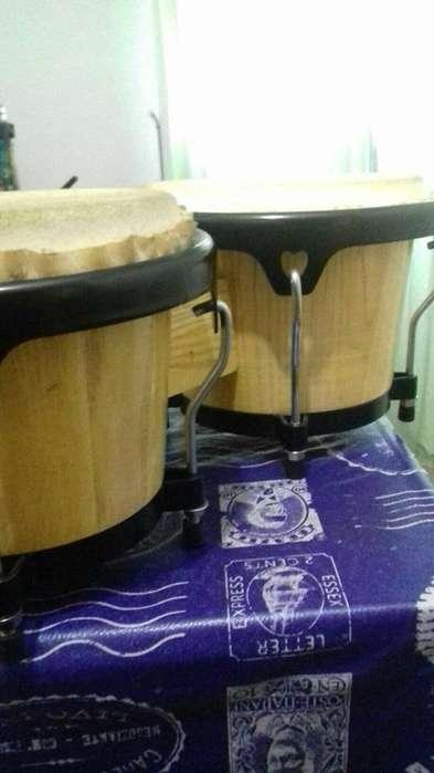 Bongos- percusión