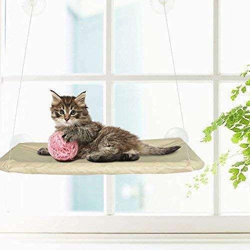 Cama Gato Para Tomar El Sol ventana Window Mounted Cat Bed