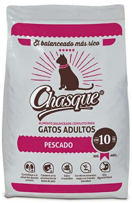 Chasque Gato