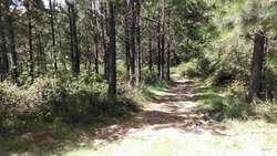 Cabañas Sierras de Cordoba,potrero Garay