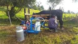 Equipos Y Maquinas de Ordeño Mecanico