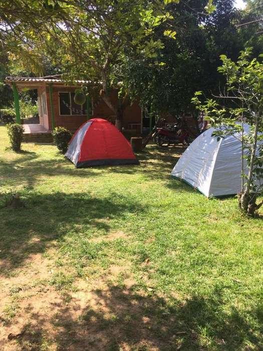 vendo-cambio finca de 6 hectáreas con casa de 4 habitaciones en el llanito - barranca bermeja