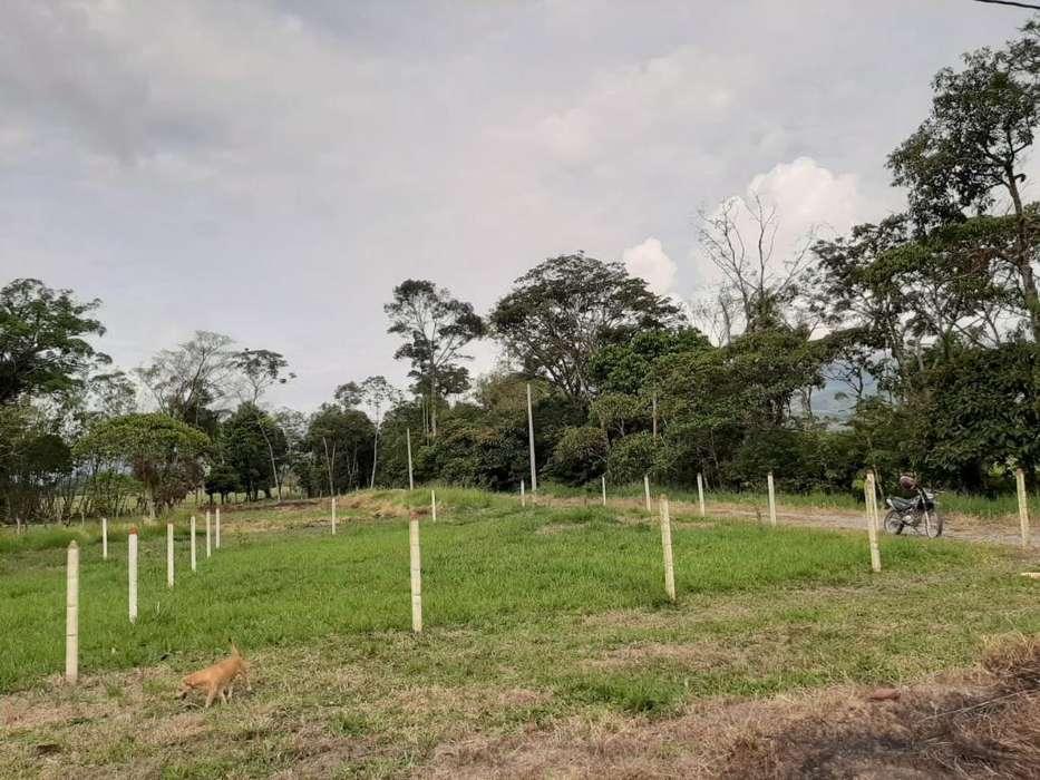 Vendo Lote Campreste Acacias