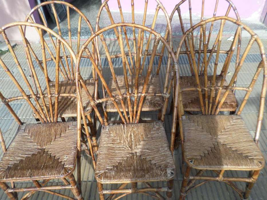 sillas caña